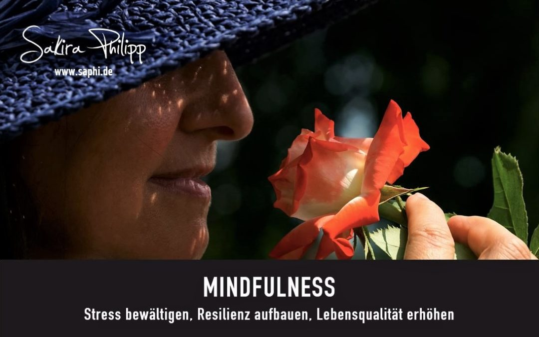 MINDFULNESS - BLOG SAPHI