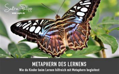 METAPHERN DES LERNENS
