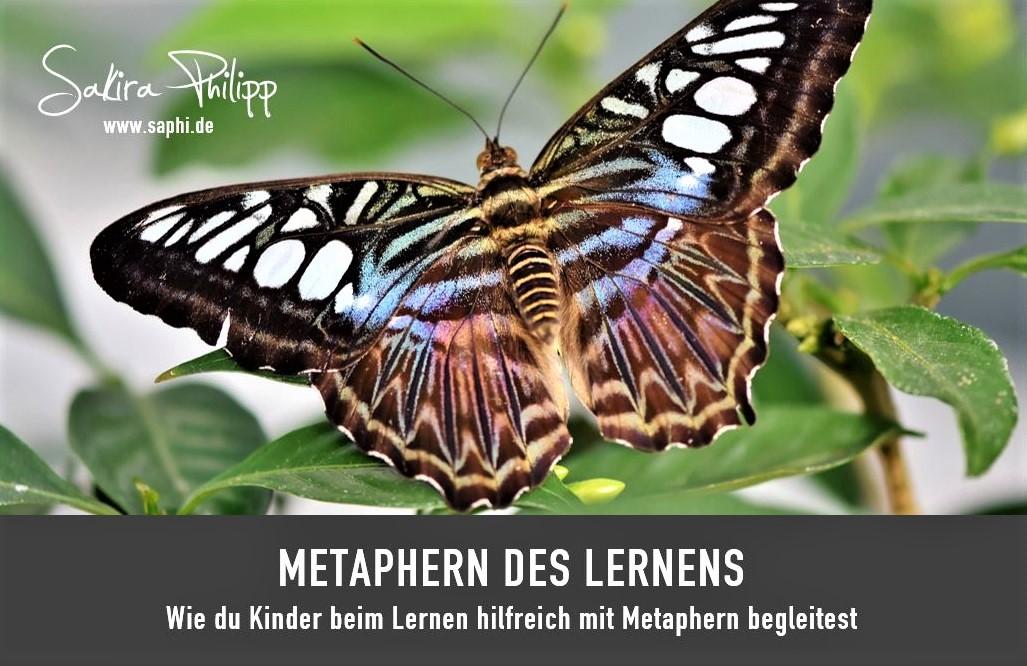 METAPHERN DES LERNENS - SAKIRA PHILIPP - O